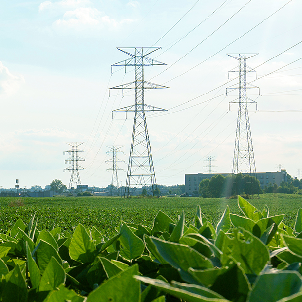 Transmission lines crossing an agricultural field